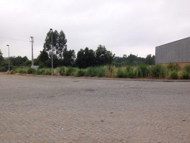 Lotes de Terreno para construção de armazéns Industriais | S. Mamede de Coronado