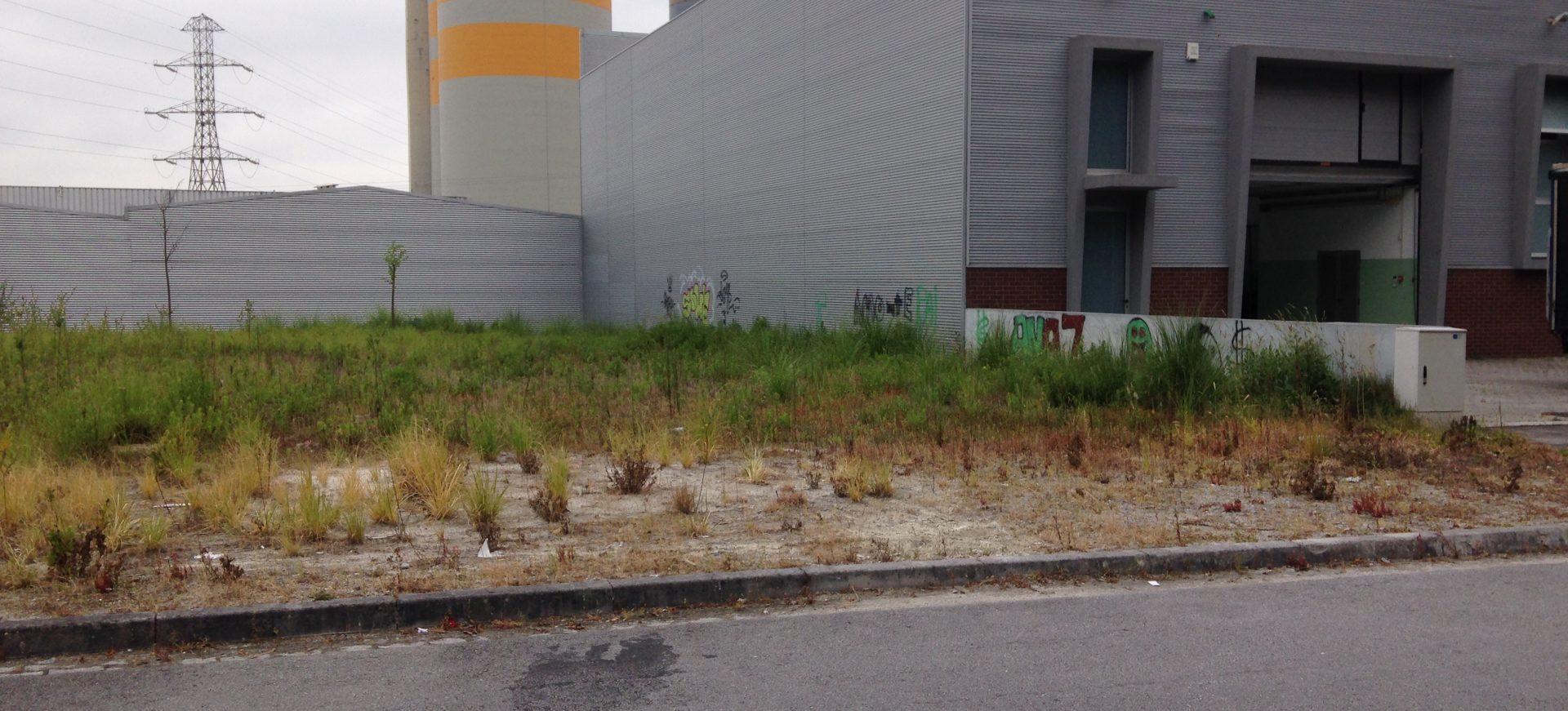 Lotes de terreno para construção de armazéns industriais | S. Pedro de Fins