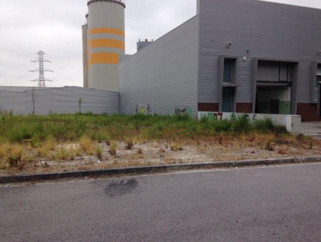 Lotes de terreno para construção de armazéns industriais   S. Pedro de Fins